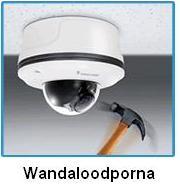 FD8134V VIVOTEK Mpix - Kamery kopułkowe IP